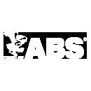 ABS Design Assesment
